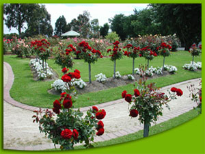 Cerro largo cierre curso de paisajismo jardiner a y for Aprender jardineria